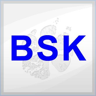 BSK Logistik